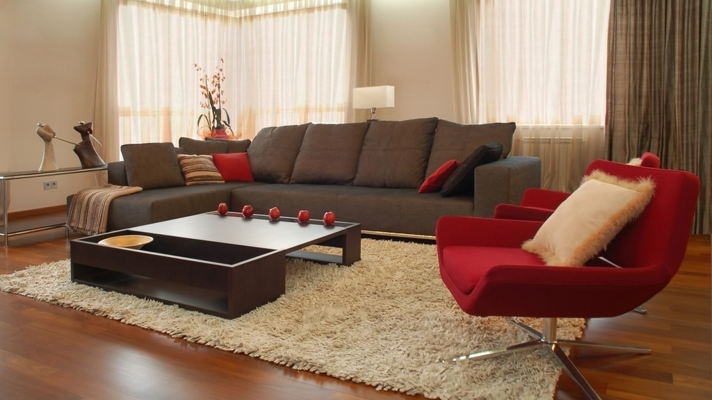 Contemporary Living Room Shag Rug Flooring (View 4 of 13)