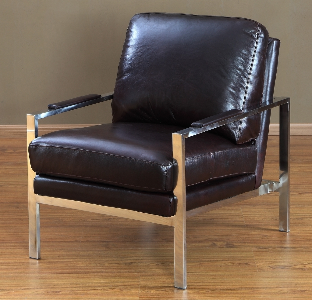 Leather Chairs With Metal Frame (Image 18 of 27)