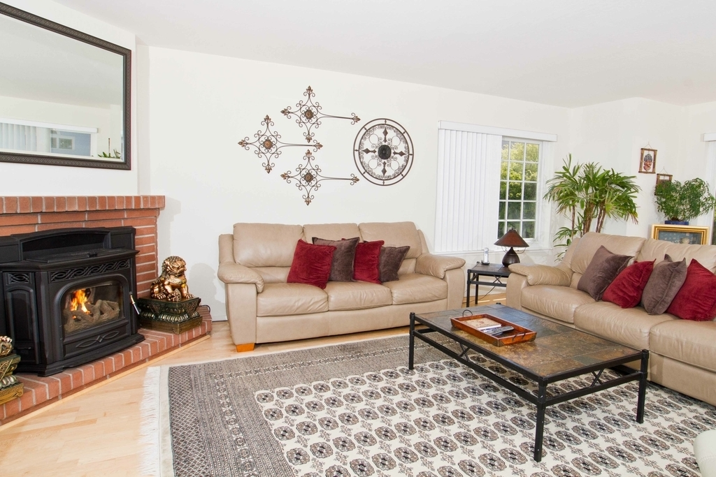 Traditional Living Room With Oriental Rug (Image 22 of 24)