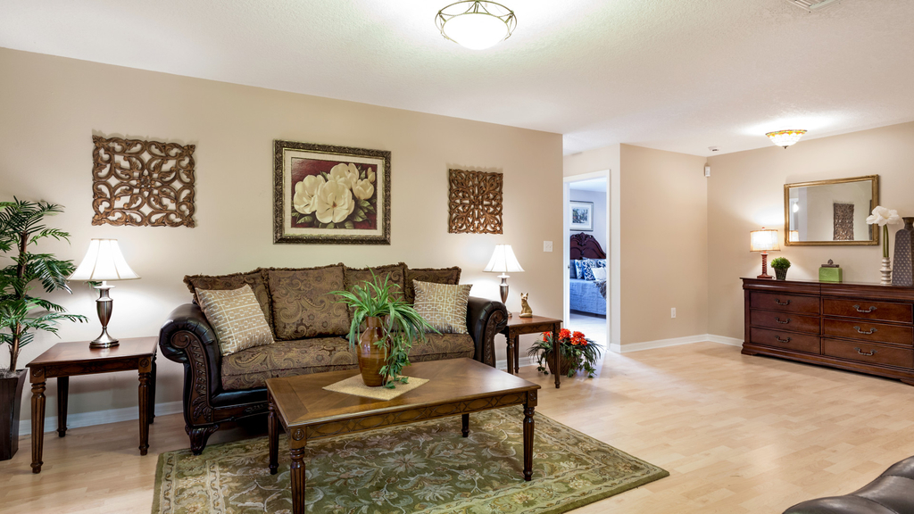 Wonderful Living Room With Oriental Rug (Image 24 of 24)