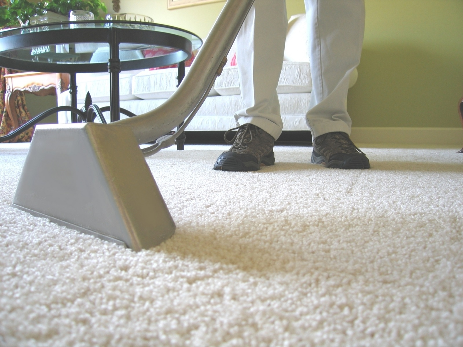carpet cleaning with cleaner image 3 of 8