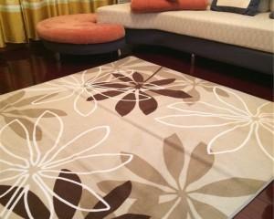 Clean Contemporary Fabric Carpet