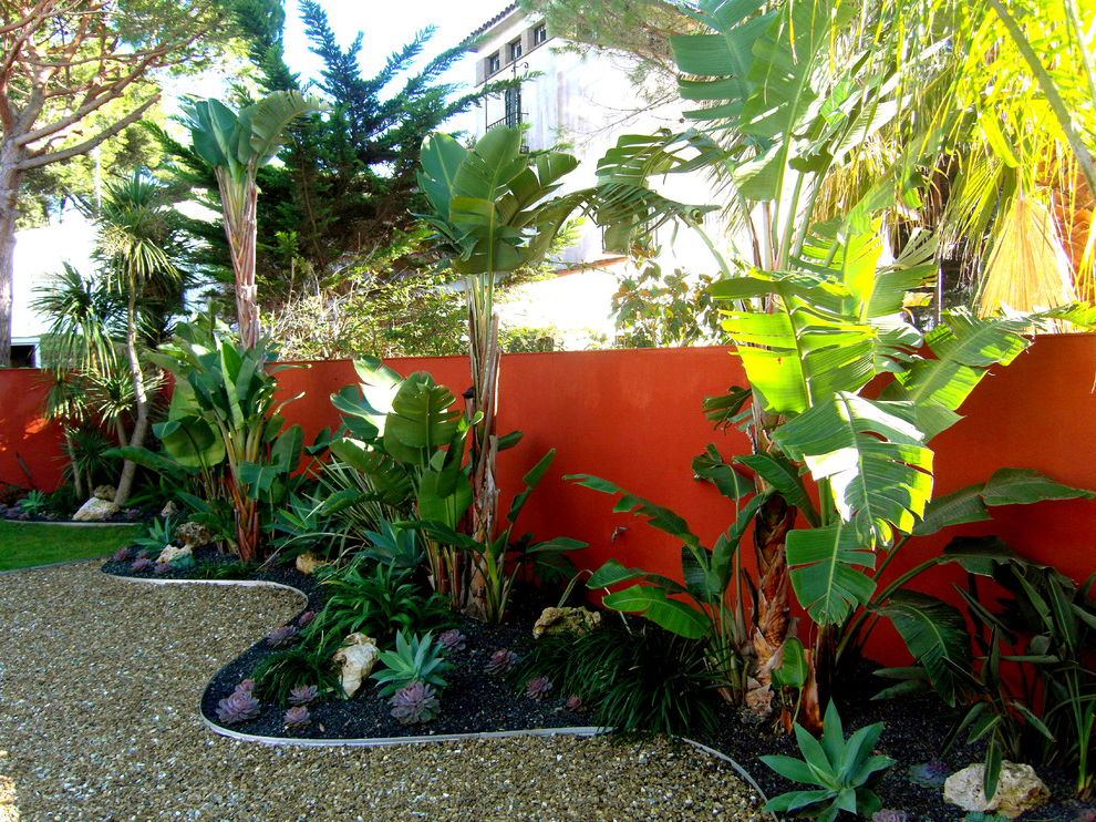 Tropical backyard ideas for beautiful view 507 garden ideas for Tropical house plans with courtyards