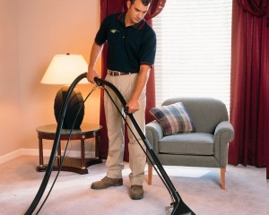 Simply DIY Carpet Cleaning