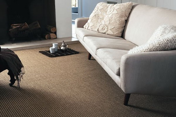 Berber Carpet Ideas For Living Room (Image 5 of 10)