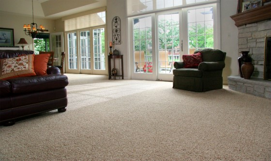 Berber Carpet At Living Room (Image 2 of 10)