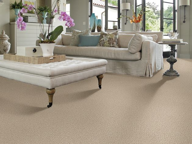 Berber Carpet For Living Room Flooring (Image 4 of 10)