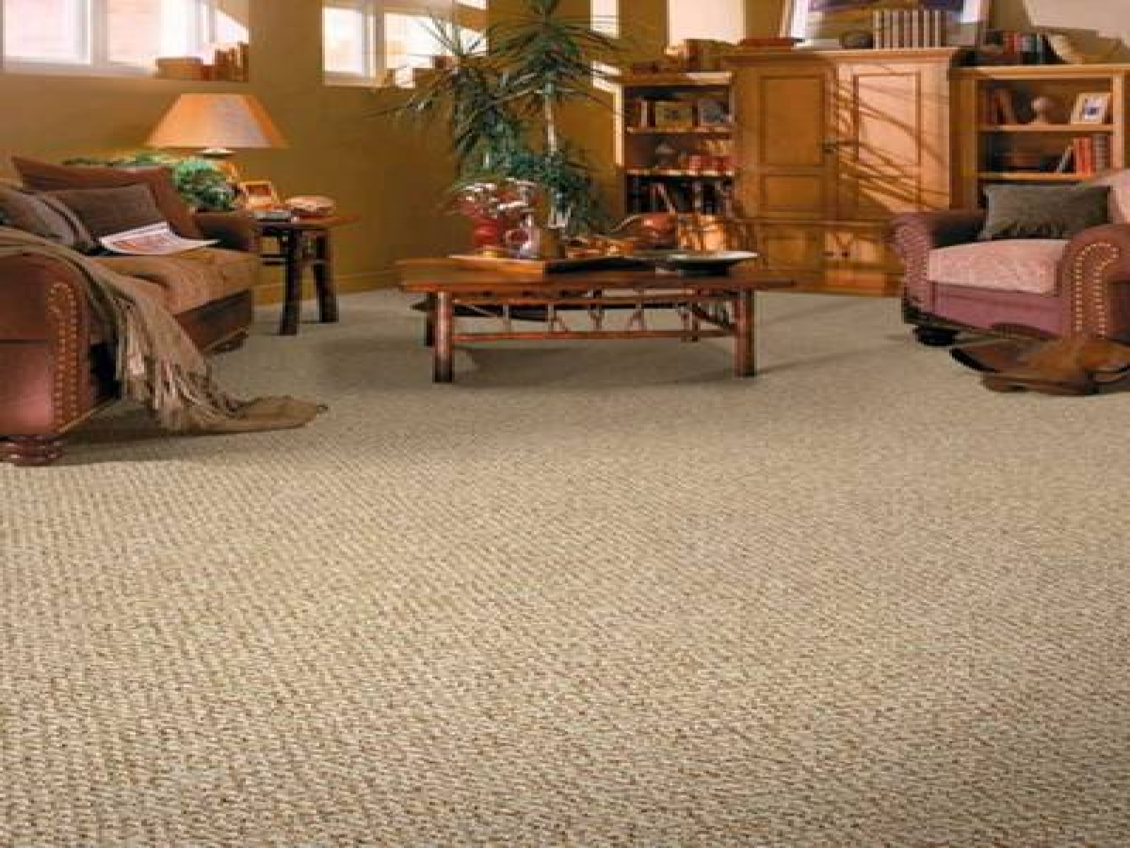 Elegant Berber Carpet Ideas At Living Room (Image 7 of 10)