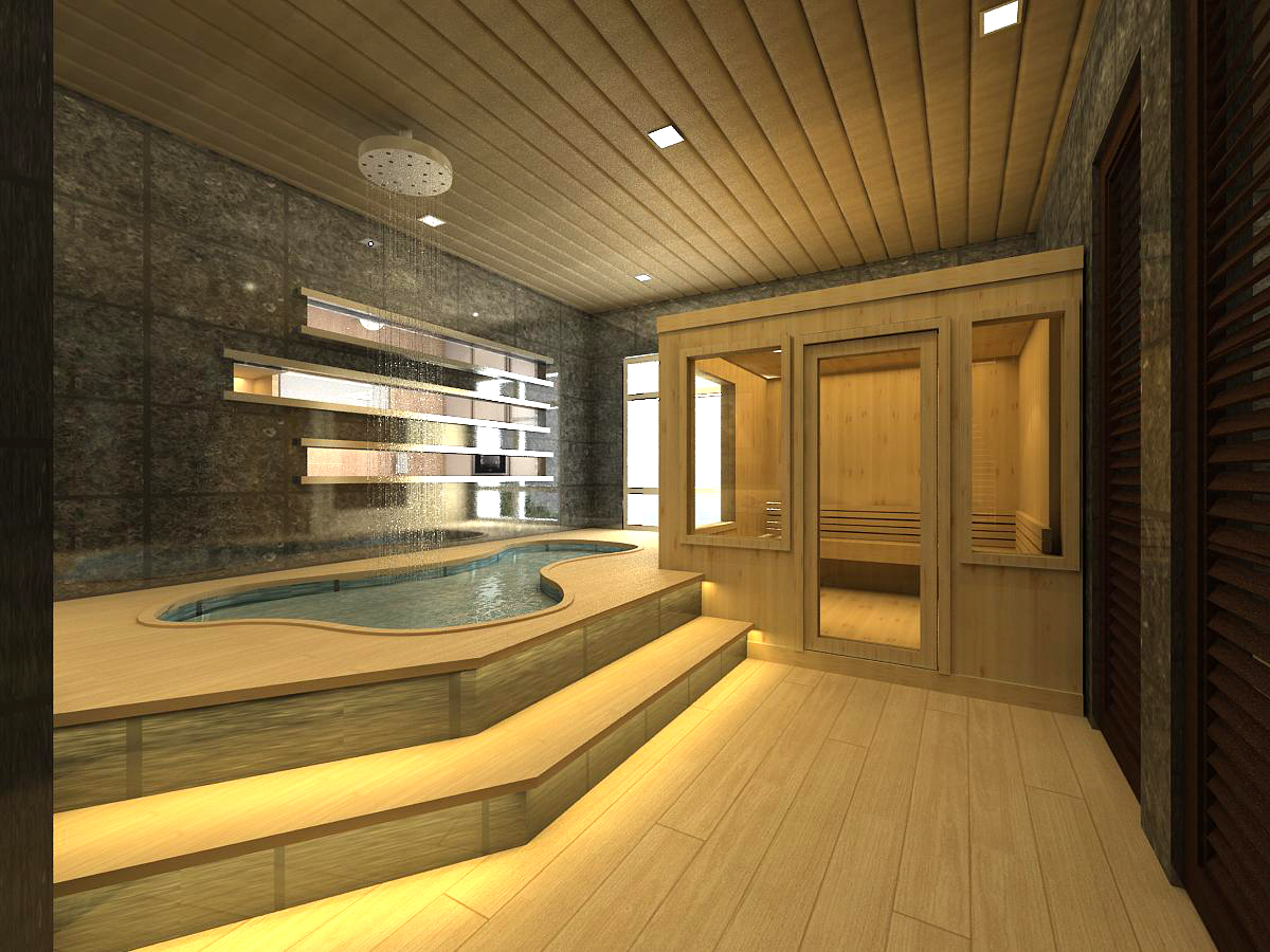 Large Sauna Design (Image 8 of 10)