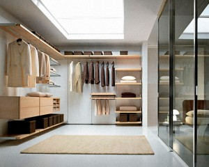 Large Space Walk in Closets
