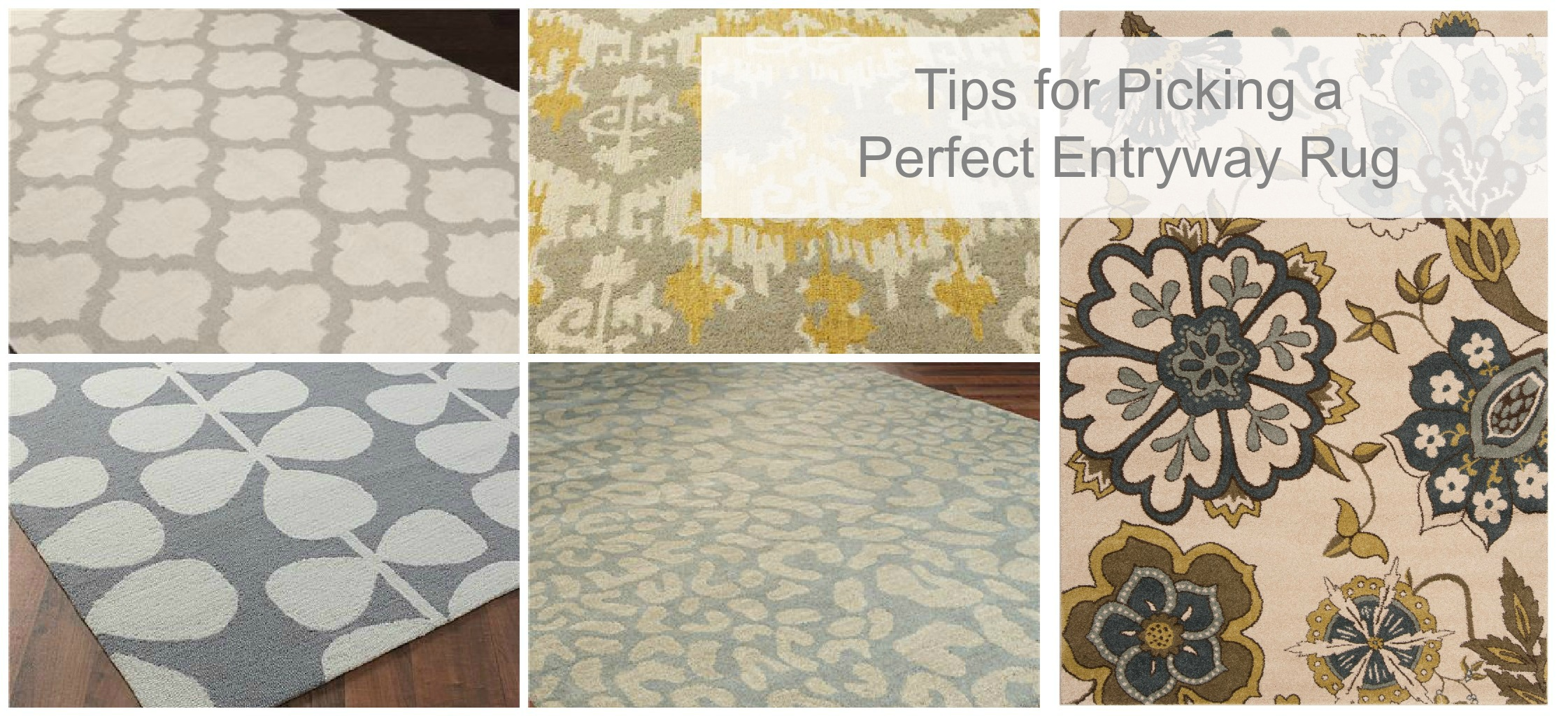 Model Of Perfect Entriway Rug (View 10 of 28)