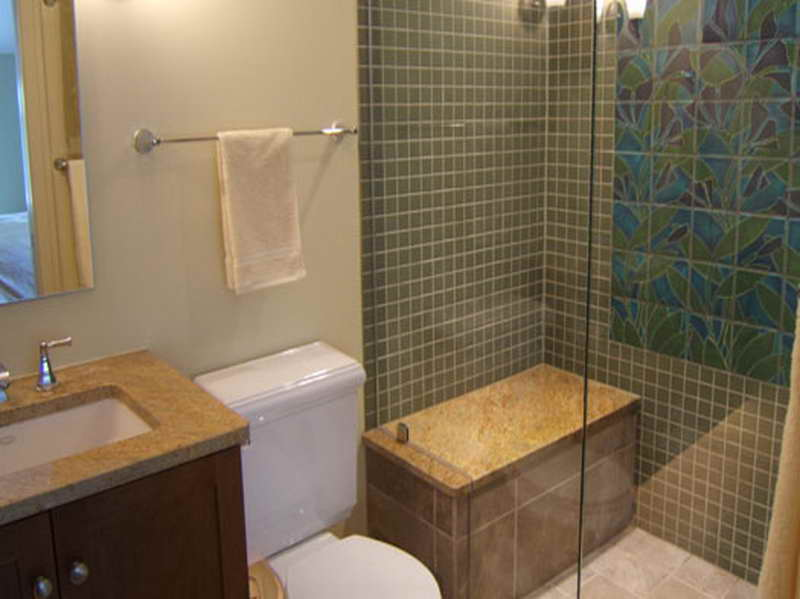 Remodeled Bathrooms Plans On A Budget (Image 7 of 10)