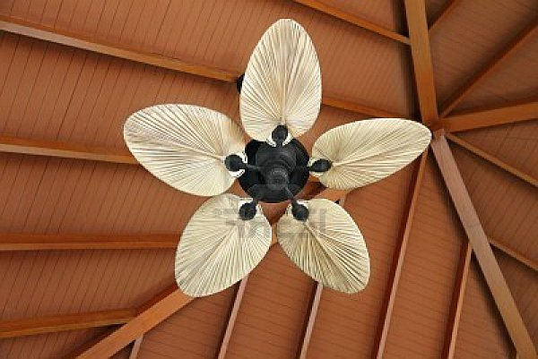 Unique Ceiling Fans (Image 10 of 10)