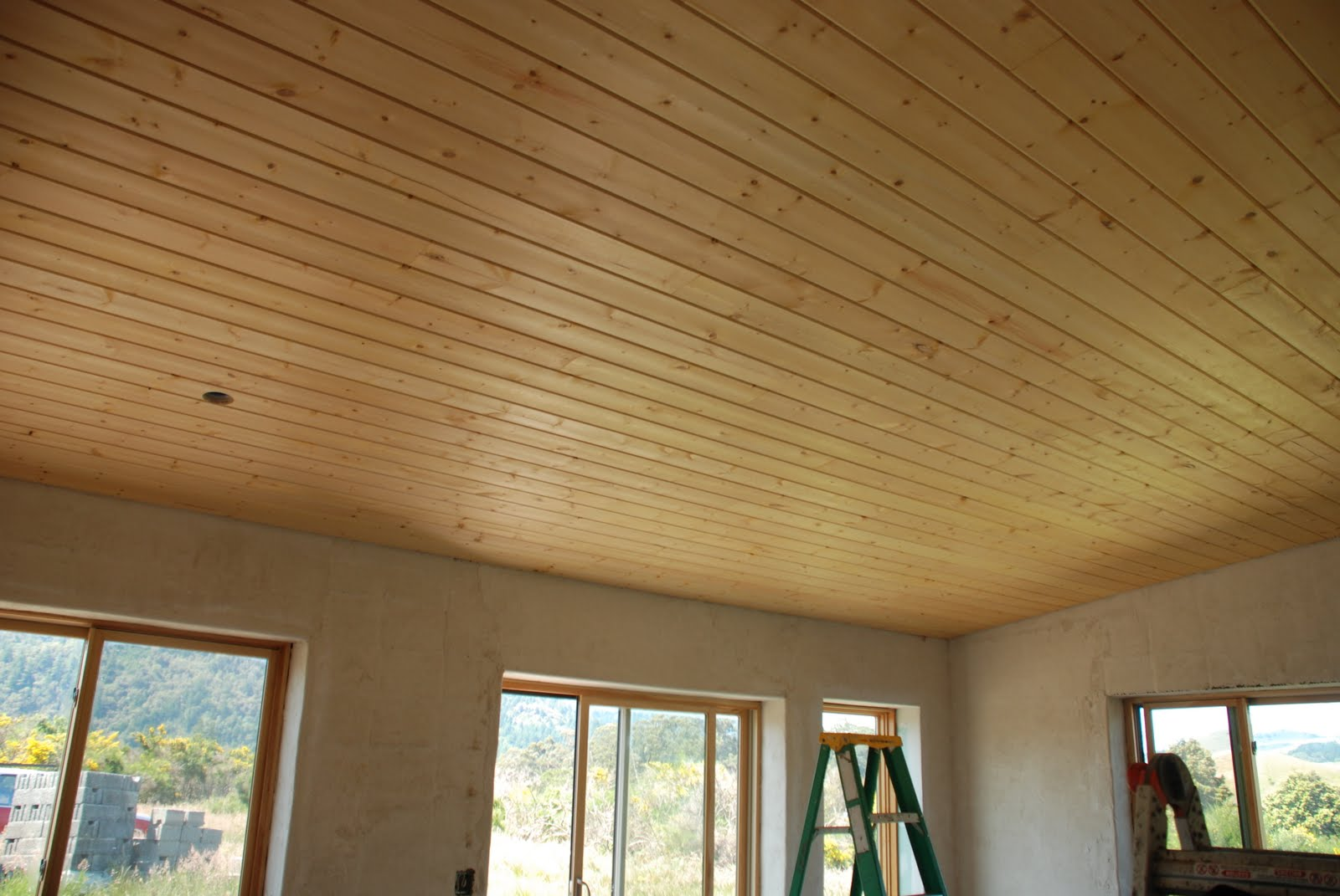 Simple Wood Finished Ceiling Interior 3017 House