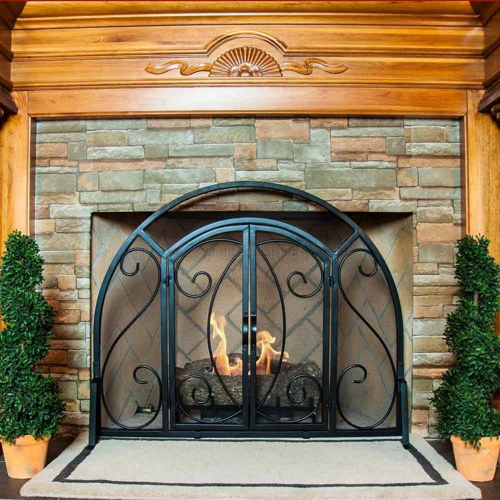 Beauty Fireplace Screen With Doors (Image 2 of 13)