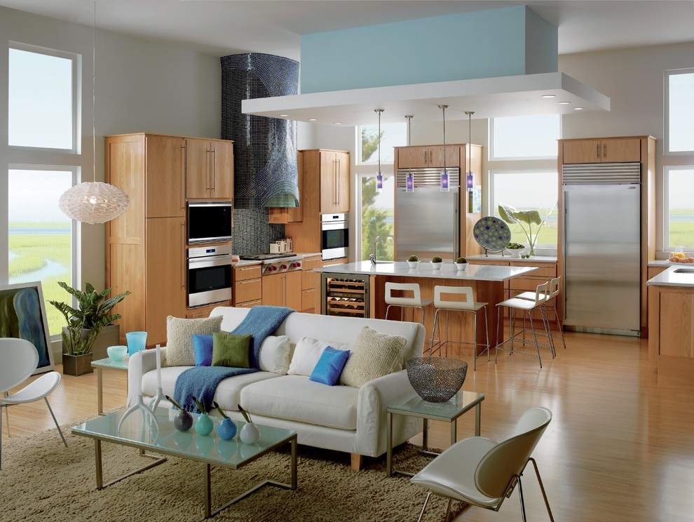 Contemporary Kitchen And Living Room Combo (Image 2 of 12)