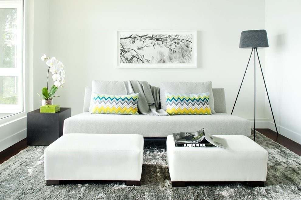 Featured Image of 2015 Minimalist Living Room Cozy Style