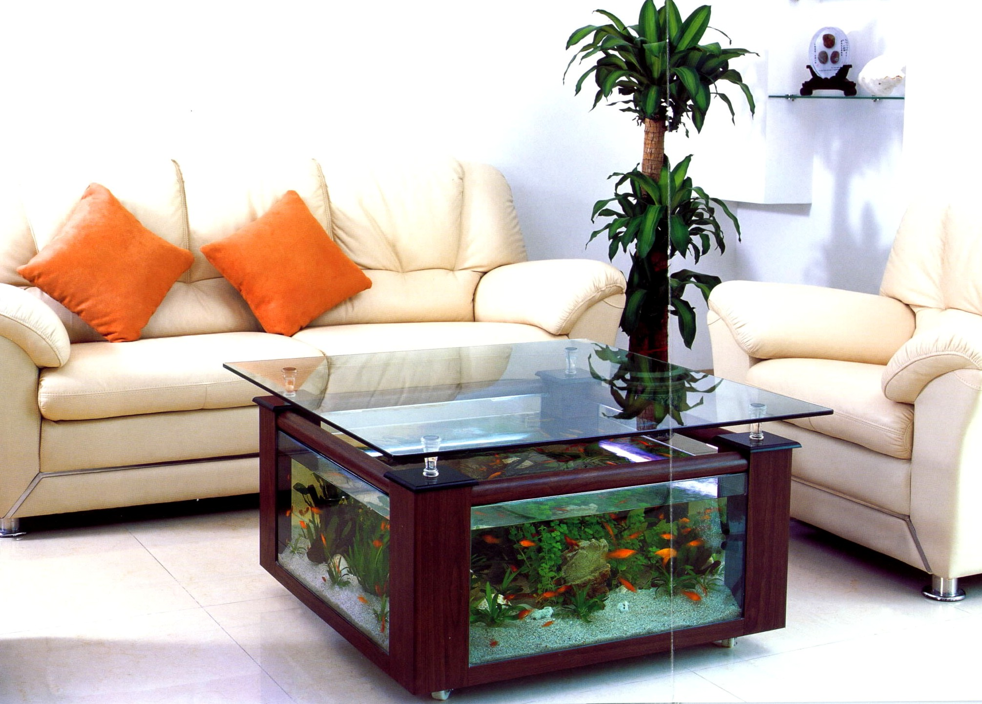 Featured Image of Creative Small Aquarium Ideas