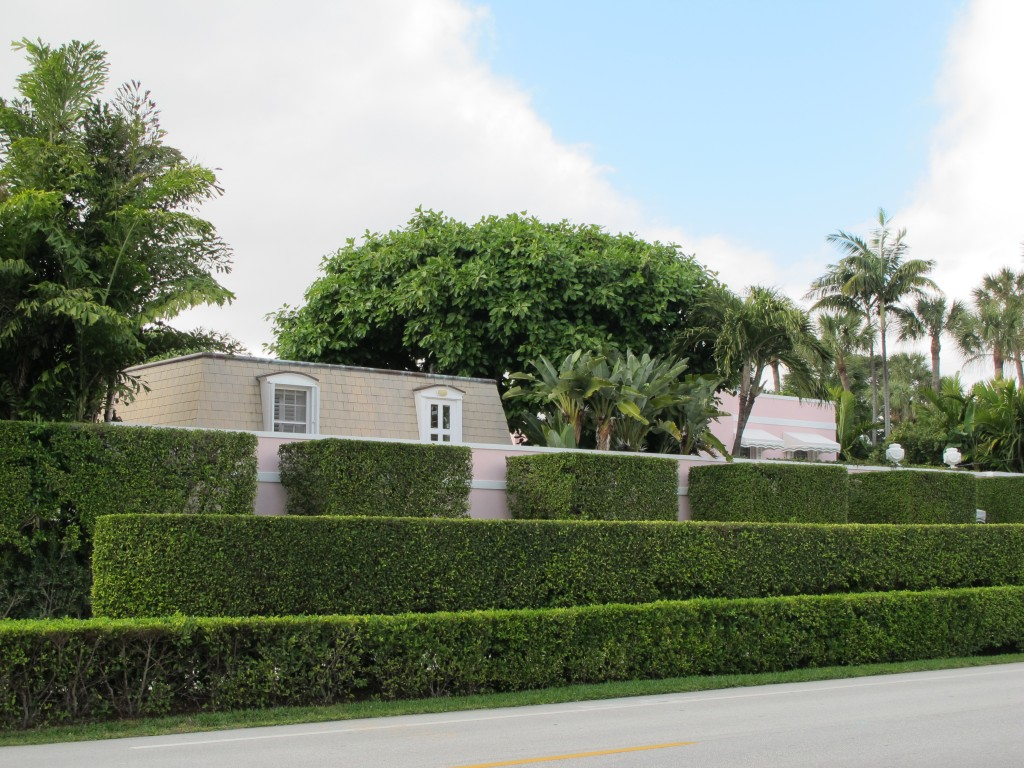 Featured Image of Garden Hedges Design Ideas