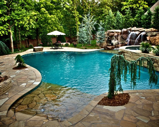 Featured Image of Natural Swimming Pool Design Ideas