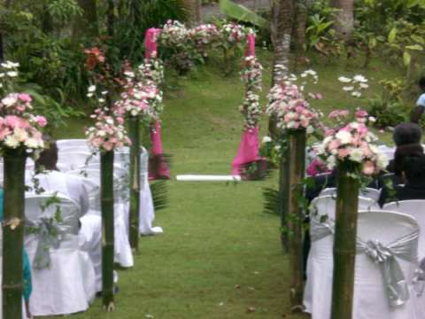 Outdoor Garden Wedding Reception Ideas #7143 | House Decoration Ideas