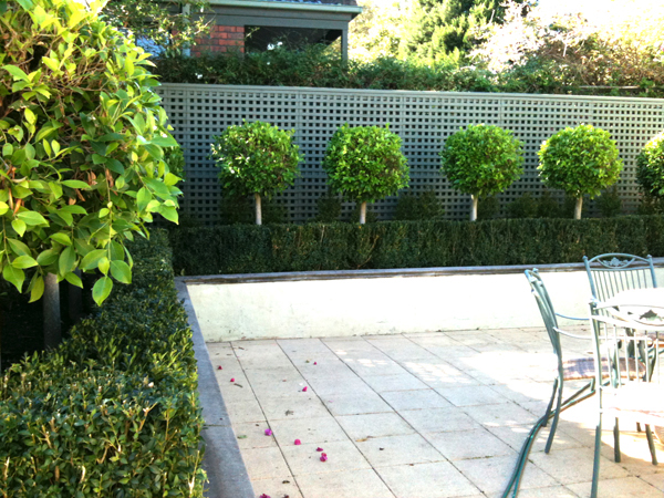 Featured Image of Simple Minimalist Garden Hedges Ideas