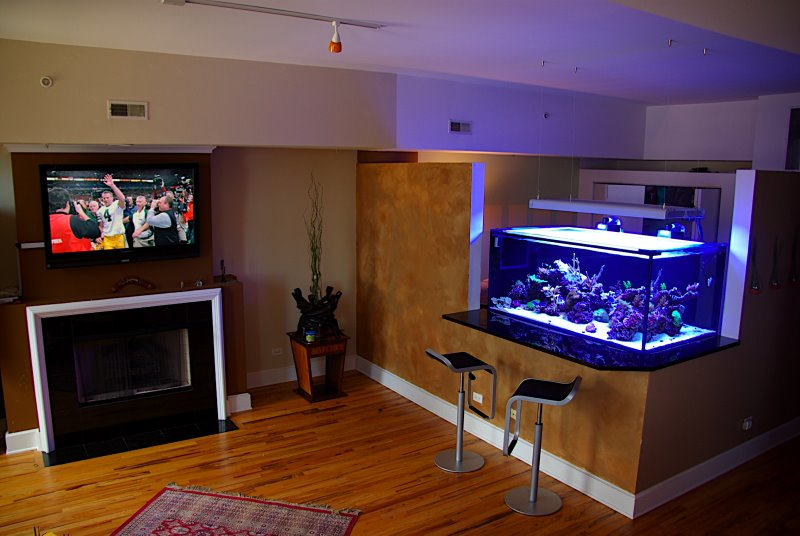 Featured Image of Small Aquarium Decoration Ideas