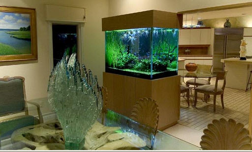 Featured Image of Small Aquarium Design Ideas