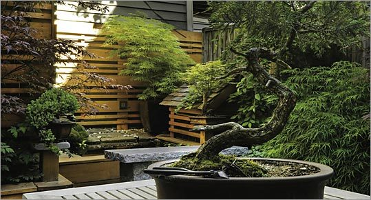 Featured Image of Small Japanese Garden Ideas