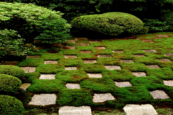 Featured Image of Unique Garden Path Design Ideas