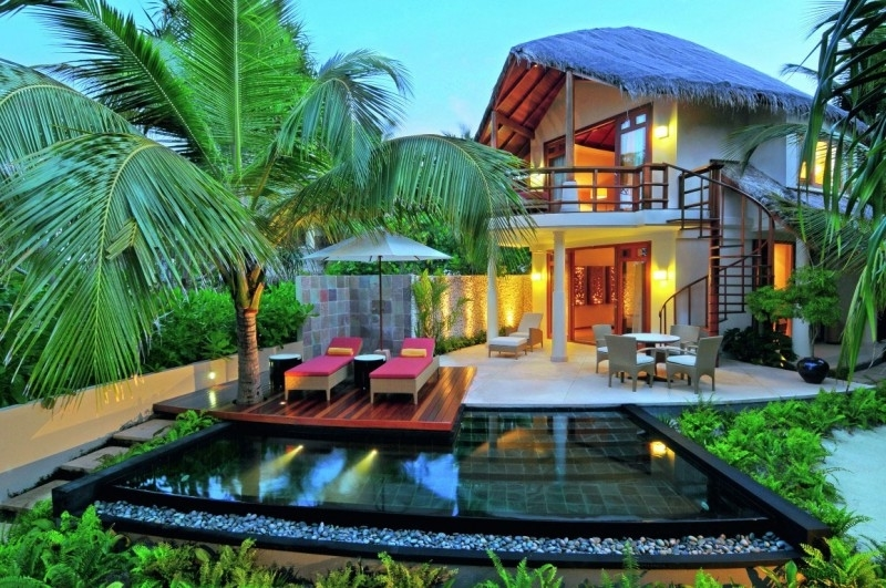 Featured Image of Palm Tree Home Backyard Design And Decor