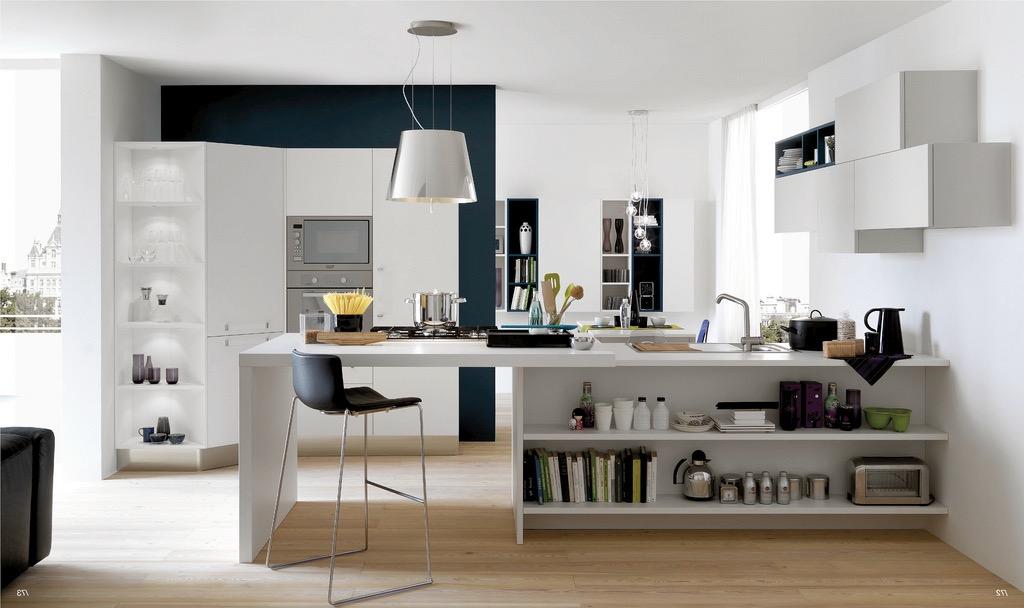 Open Kitchen Designs Effective Concept (Photo 14 of 23)