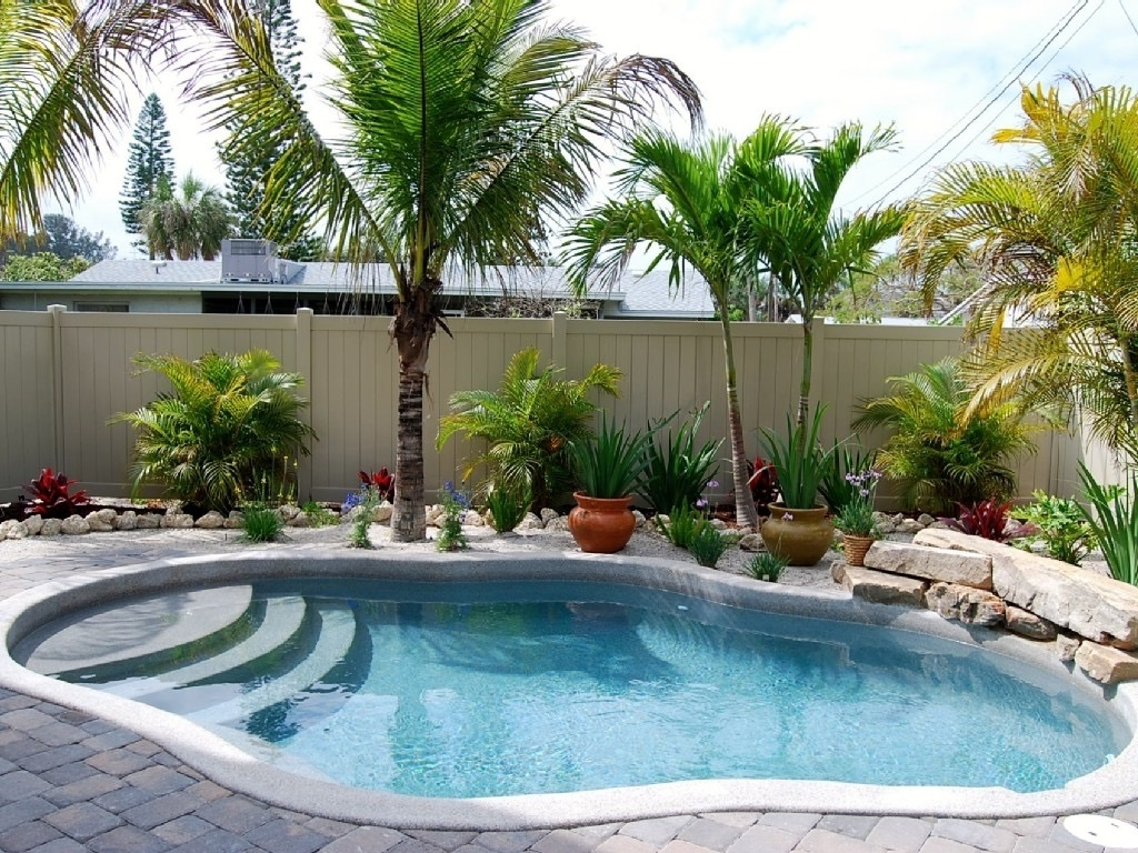 Tropical Backyard Garden Swimming Pool (Image 17 of 26)