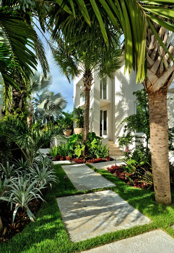 Green Tropical Garden Landscape For Modern House (Image 7 of 26)