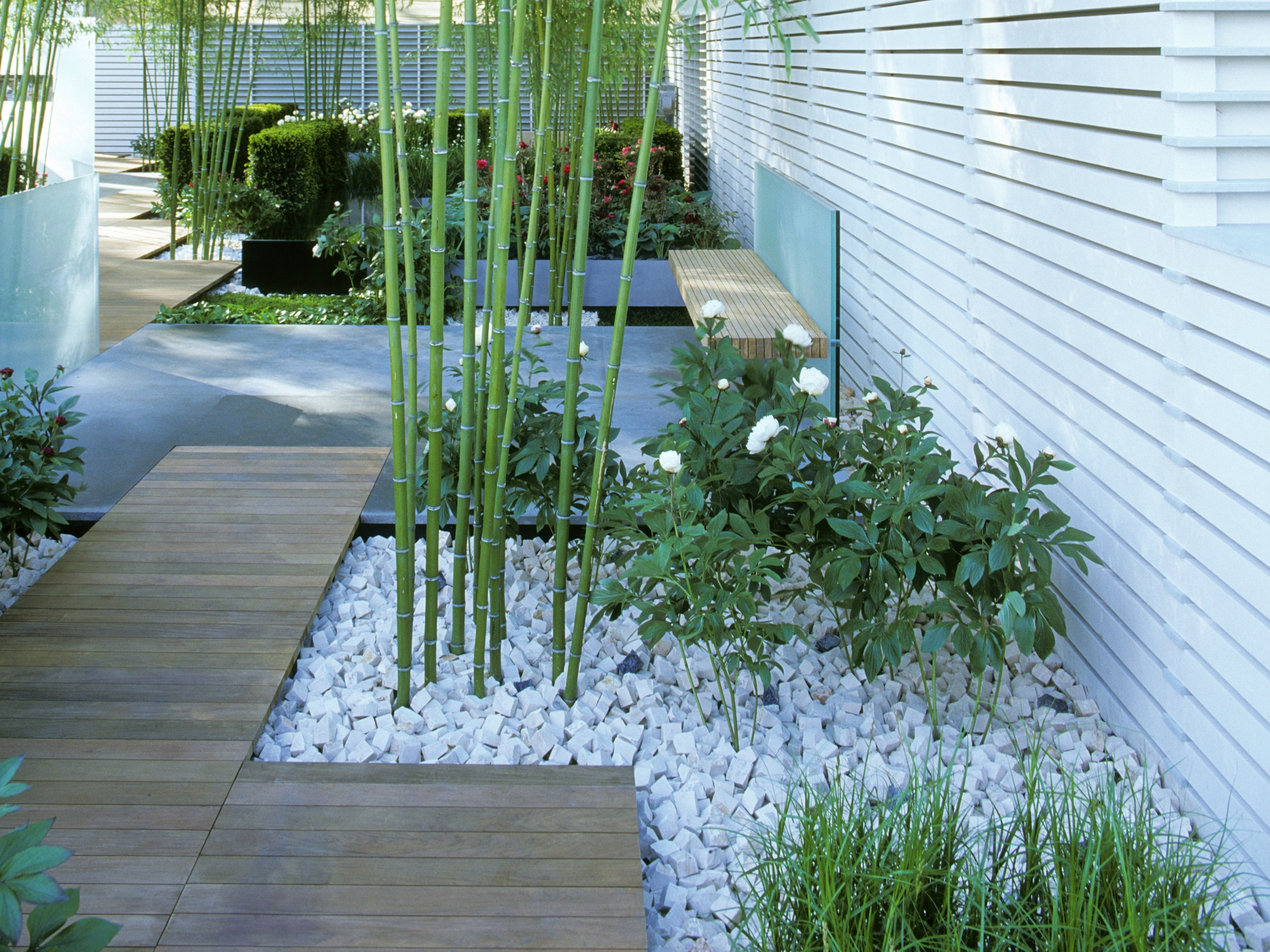 Modern Japanese Garden With Bamboo Understated Style (Image 5 of 10)