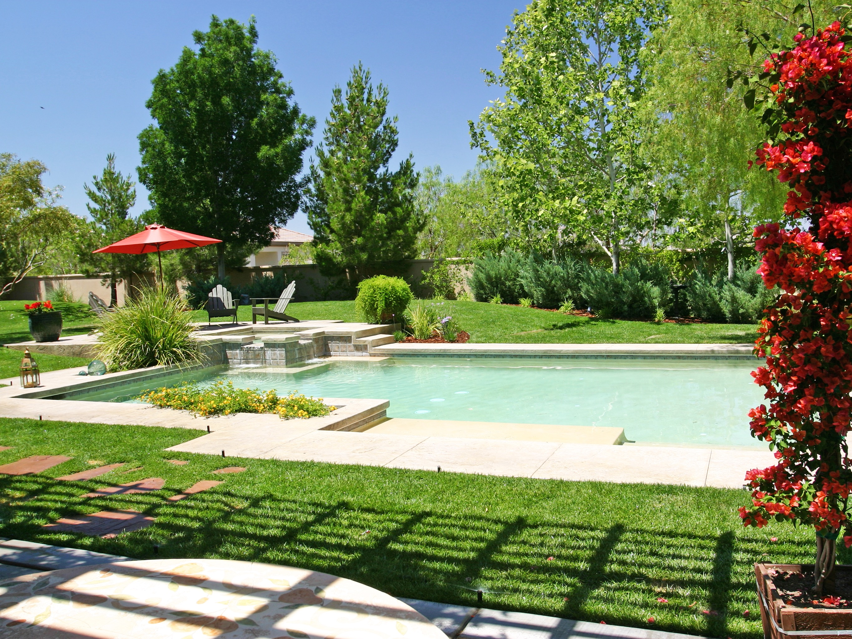 Modern Landscaped Backyard With Swimming Pool (Image 24 of 30)