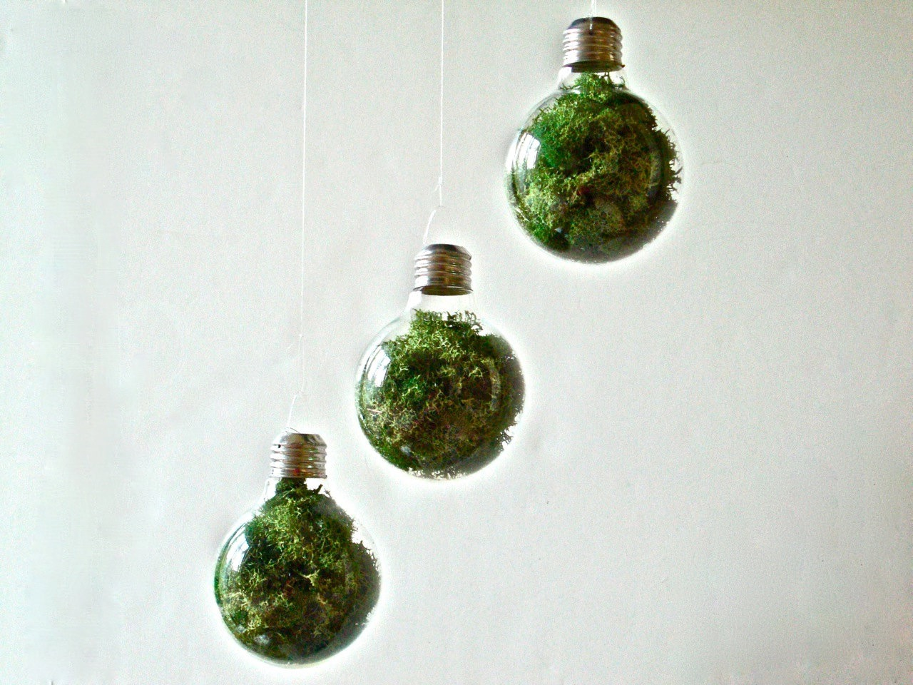 Hanging Light Bulb With Decorative Moss Nonfloral Wedding Centerpiece (Image 20 of 35)