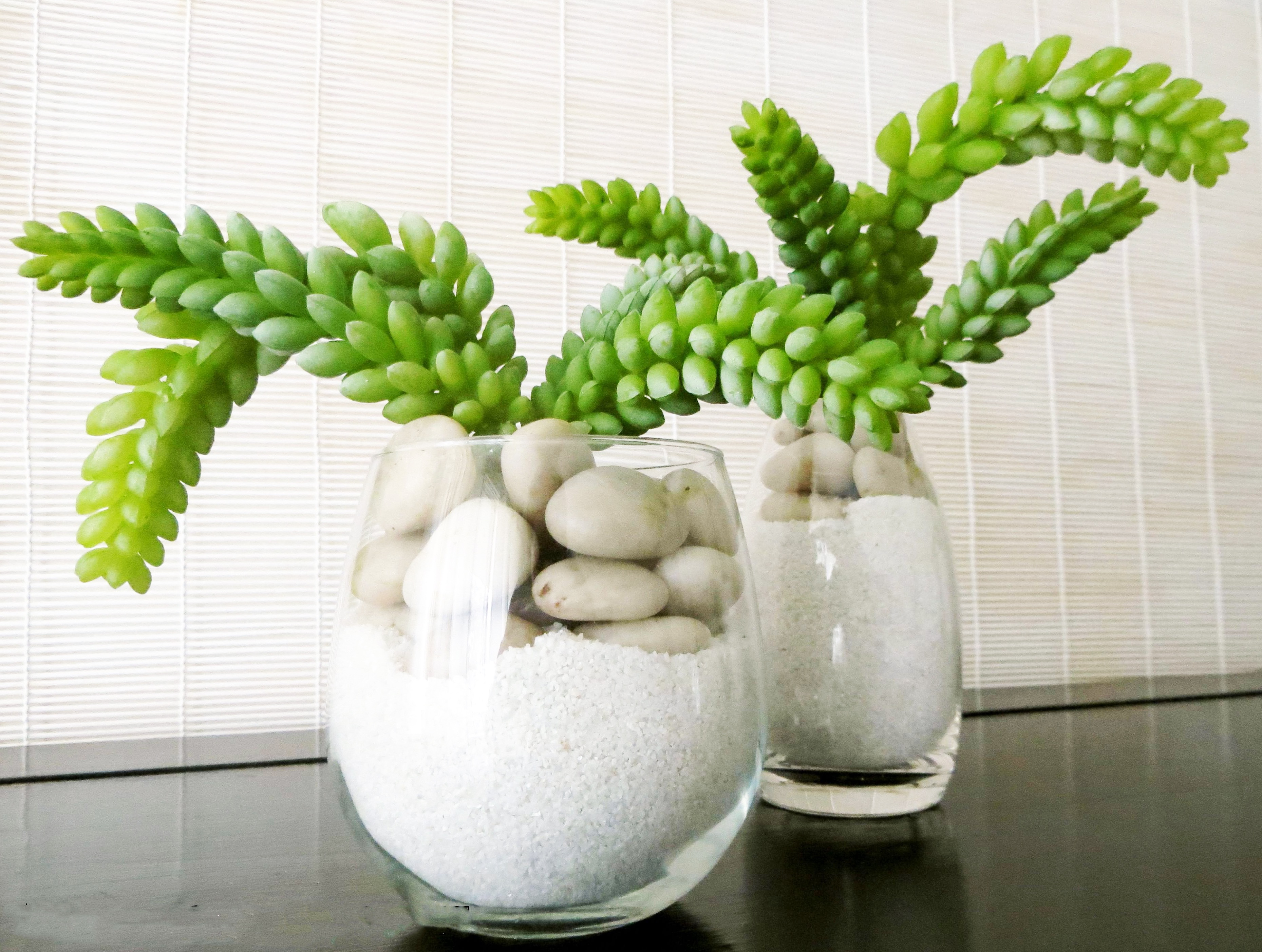 Glass Pot Centerpiece With Green Cactus, Sand And Rock (Image 6 of 15)
