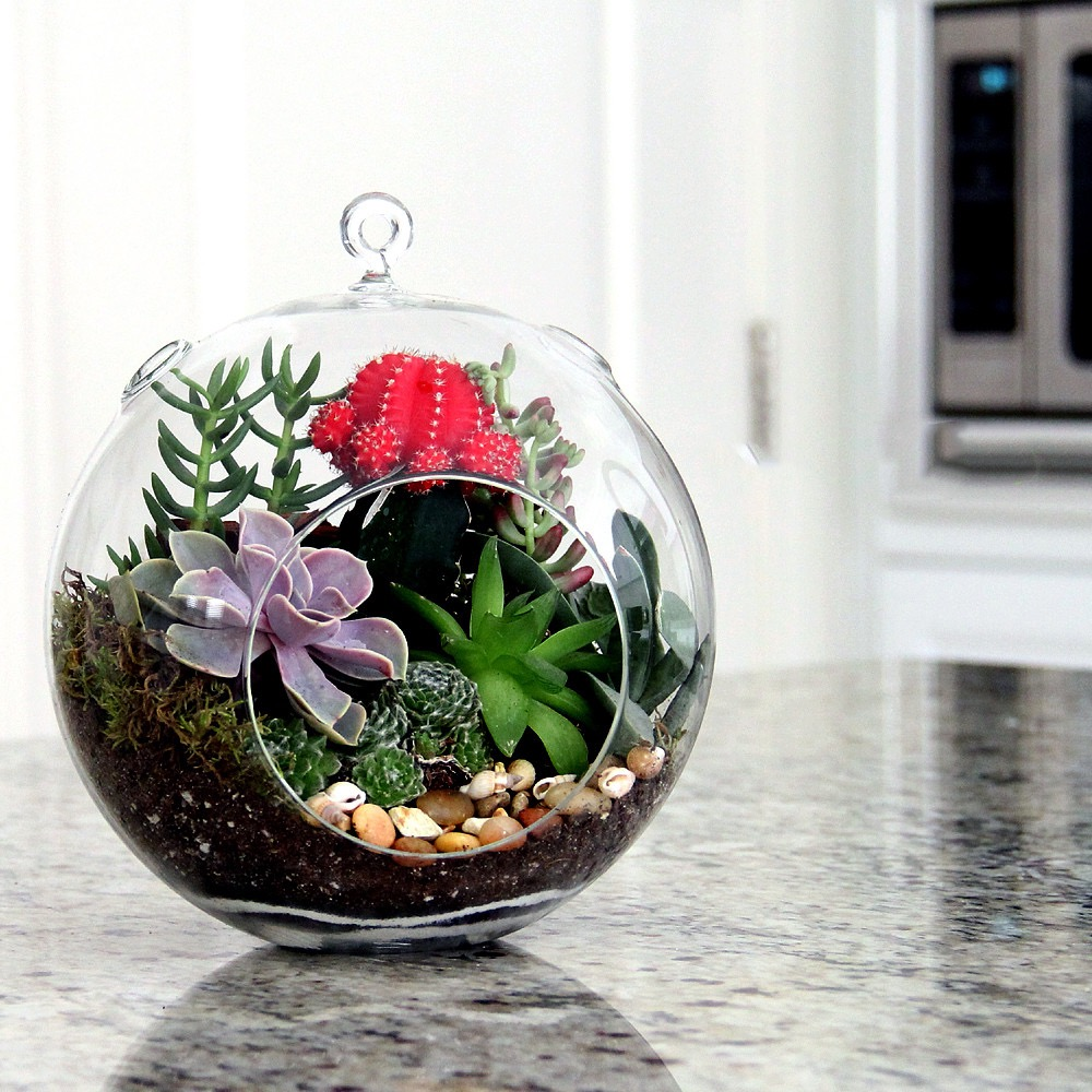 Hanging Terrarium Centerpiece With Moss Fountain Stone Rocks For Wedding (Image 21 of 35)