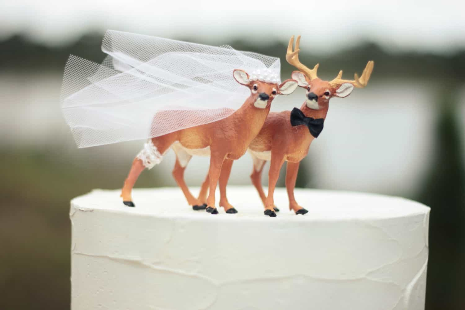 Featured Image of 10 Wedding Cake Topper Ideas