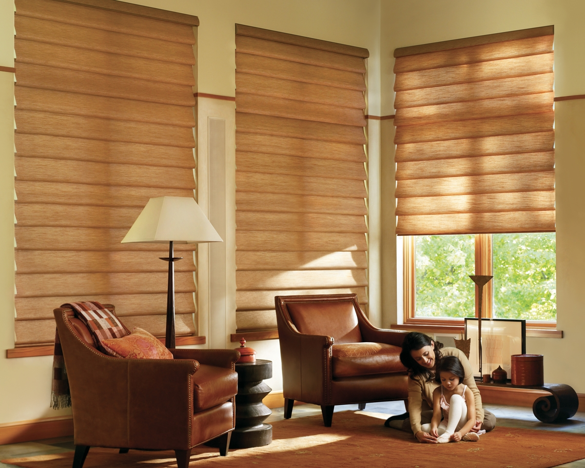 25 Best Ideas About Modern Roman Blinds On Pinterest Modern For Front Room Blinds (Image 1 of 15)