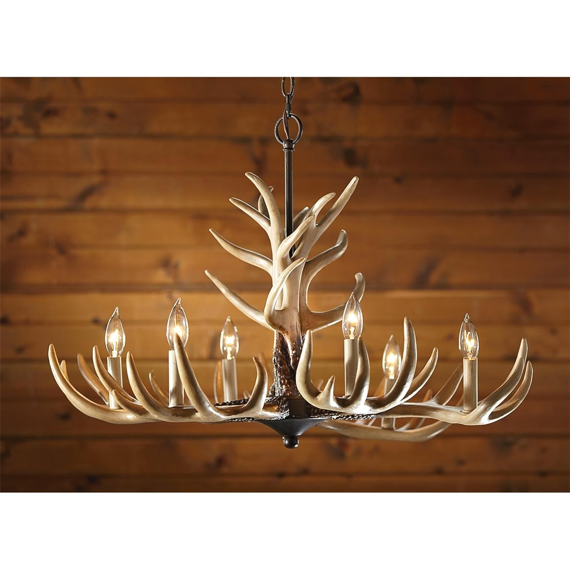 6 Light Antler Chandelier 210035 Lighting At Sportsmans Guide With Regard To Antler Chandelier (Image 2 of 15)