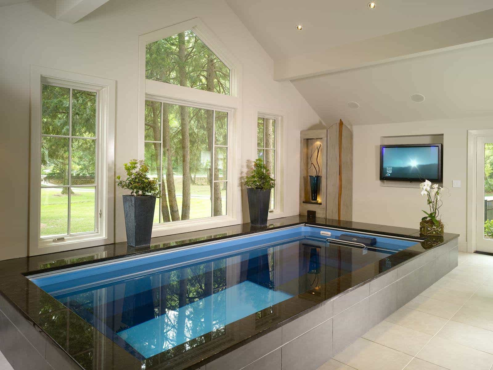 Fashoinable Small Indoor Swimming Pools Decorating With LCD TV (Image 5 of 14)