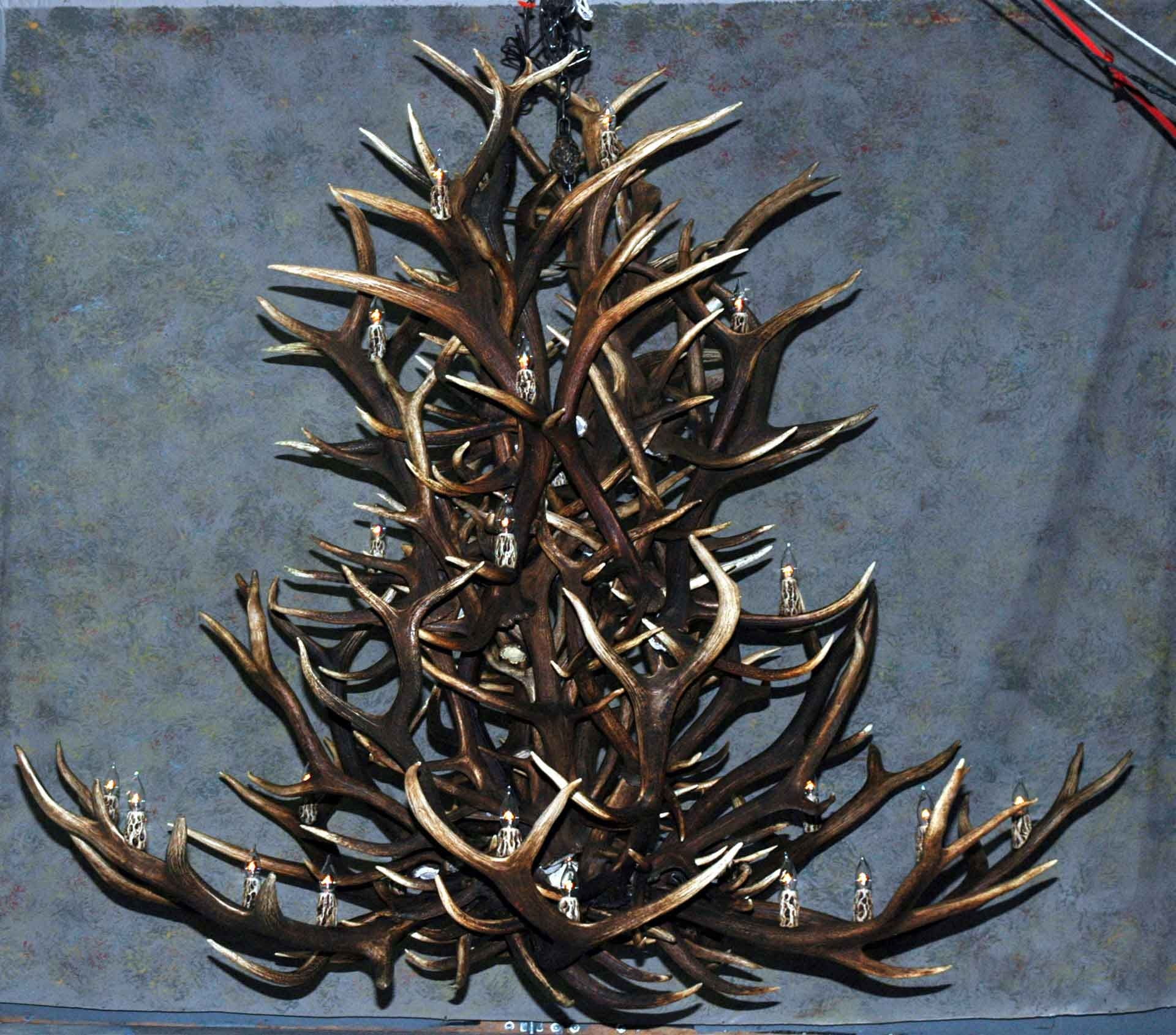 Antler Chandeliers Deer Antler Chandelier Deer Antler Lamps In Large Antler Chandelier (Image 2 of 15)