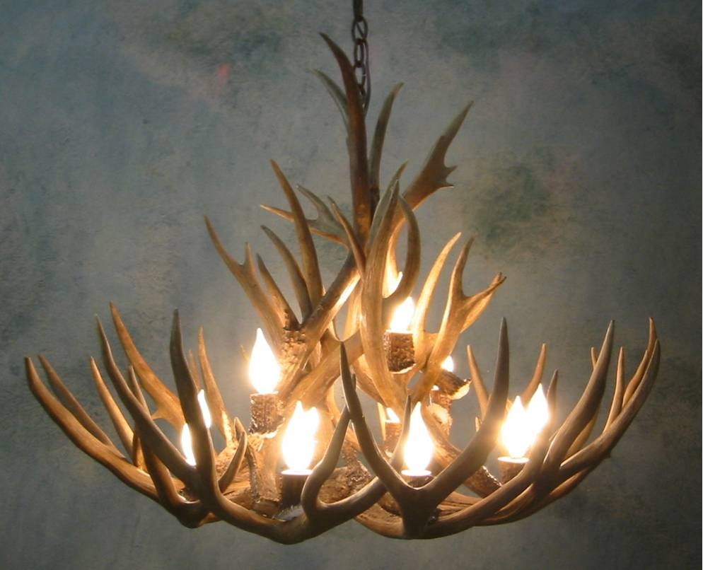 Antler Chandeliers For Sale Real Mccoy Inside Large Antler Chandelier (Image 4 of 15)