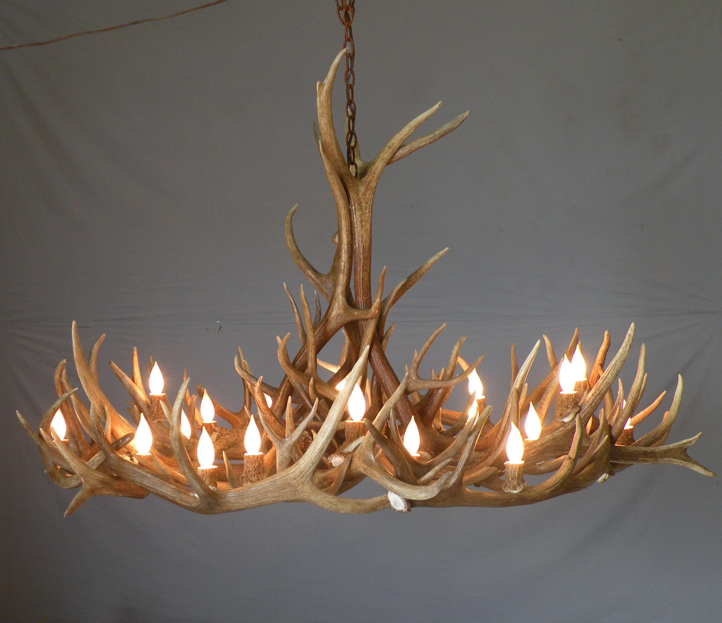 Antler Chandeliers Wdc Returning Artist Peak Antlers Accents Within Unusual Chandeliers (Image 3 of 15)