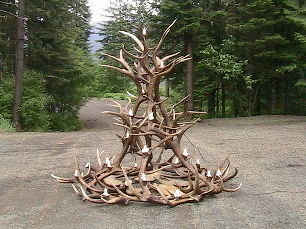 Featured Image of Large Antler Chandelier
