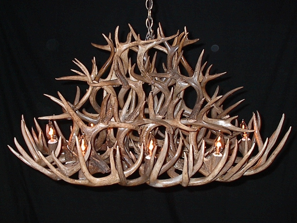 Featured Image of Stag Horn Chandelier