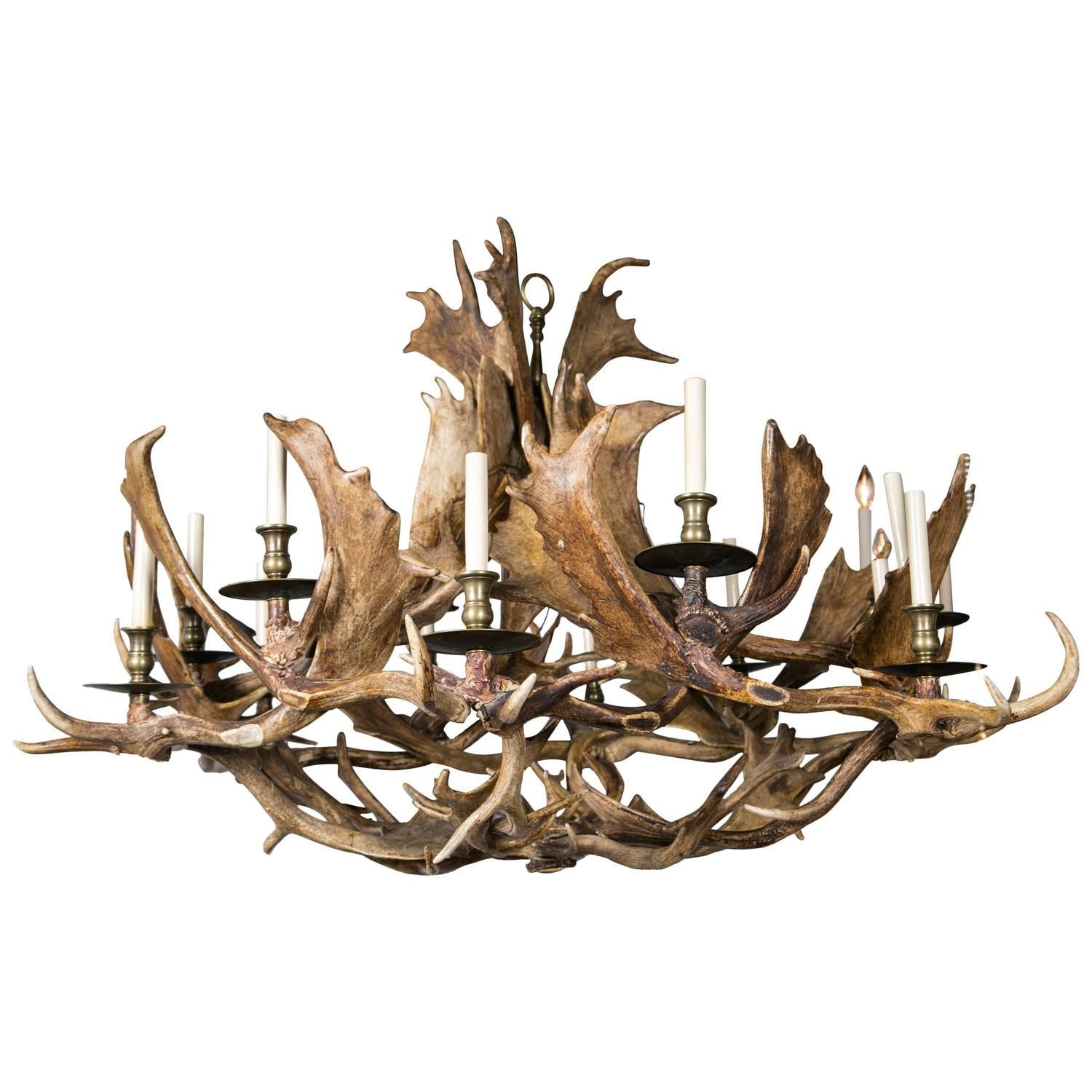 Bone Chandeliers And Pendants 50 For Sale At 1stdibs Regarding Stag Horn Chandelier (Image 6 of 15)