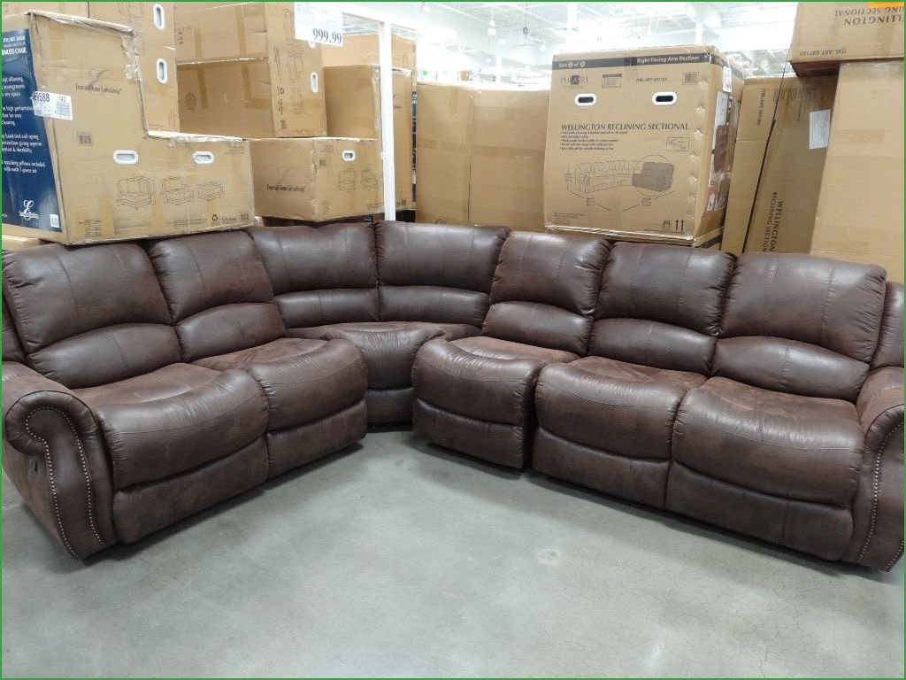 Cool Sectional Sofas St Louis 30 For Your Down Feather Sectional Intended For Down Feather Sectional Sofa (Image 2 of 15)